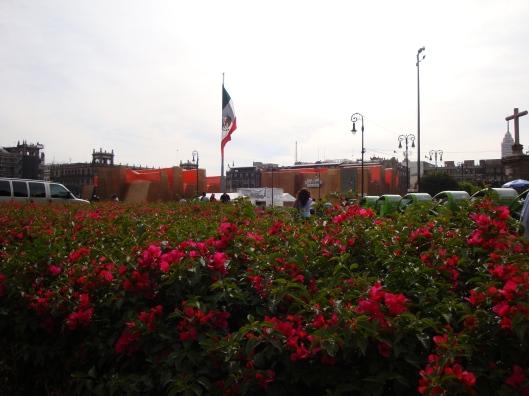 Bandeira mexicana no Zócalo (Foto: Priscila Dal Poggetto)