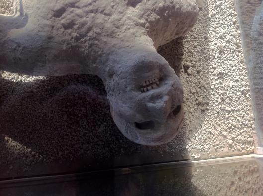 Corpos foram preservados pela fuligem do vulcão, que grudava no corpo e derretia a pele (Foto: Priscila Dal Poggetto)