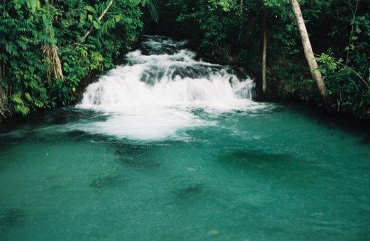 Nascente de rio no Jalapão (Foto: Priscila Dal Poggetto)