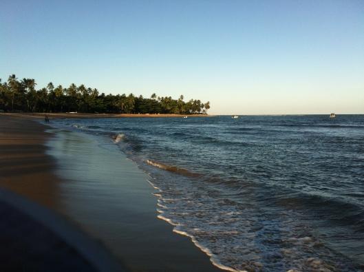 Fim de tarde na Praia do Forte (Foto: Priscila Dal Poggetto)
