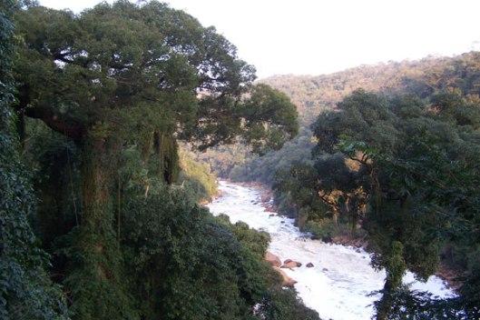 Vista do Tietê da Estrada dos Romeiros (Divulgação/Rede das Águas)