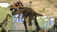 2009-09-17 - Guggelheim, Natural Museum, BubbaGump (143)