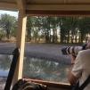 Maurício e a paixão em fotografar bichos